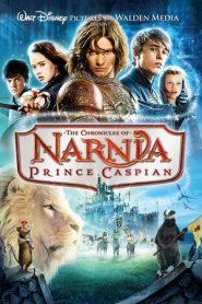 The Chronicles of Narnia: Prince Caspian (2008) Dual Audio [Hindi-ENG] BluRay 480p & 720p GDRive