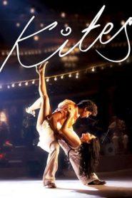 Kites (2010) Hindi BluRay 480p & 720p GDrive