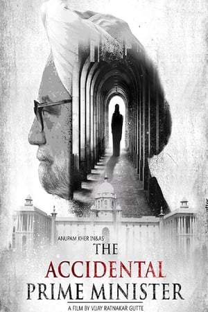 The Accidental Prime Minister (2019) Hindi Web-DL 480P 720P GDrive