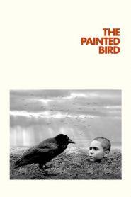 The Painted Bird (2019) BluRay 480p & 720p | GDrive | Bsub