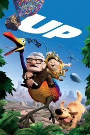Up (2009) Dual Audio [Hindi-RNG] BluRay 480p & 720p | GDrive
