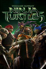 Teenage Mutant Ninja Turtles (2014) Dual Audio BluRay 480P 720P GDrive