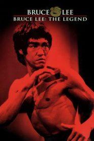 Bruce Lee: The Legend (1984) Dual Audio [Hindi-ENG] HDTV 480p & 720p | GDrive