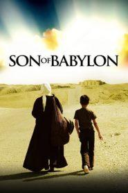 Son of Babylon (2009) BluRay 480p 720p   GDrive   1Drive