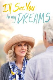 I'll See You in My Dreams (2015) BluRay 480p & 720p GDrive
