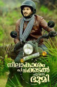 Neelakasham Pachakadal Chuvanna Bhoomi (2013) Hindi Dubbed WEB-DL 480p, 720p & 1080p | GDRive