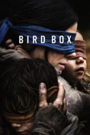 Bird Box (2018) NF WEB-DL 480p, 720p & 1080p | GDRive