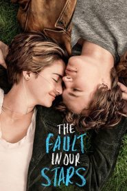 The Fault in Our Stars (2014) BluRay 480P 720P Gdrive
