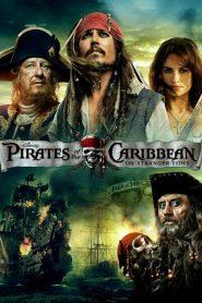 Pirates of the Caribbean: On Stranger Tides (2011) Blu-Ray Dual Audio 480p 720p x264