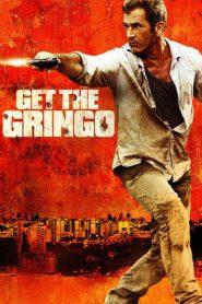 Get the Gringo (2012) Dual Audio BluRay 480P 720P x264