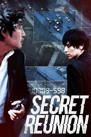 Secret Reunion (2010) BRRip 480p & 720p GDrive