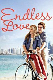 Endless Love (1981) AMZN WEB-DL 480p & 720p | GDrive | 1Drive | MEGA