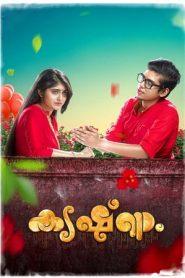 Krishnam (2018) Malayalam HDRip x264 480p 720p   GDrive