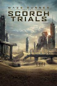 Maze Runner: The Scorch Trials (2015) Dual Audio [HIndi-ENG] BluRay 480p & 720p GDrive