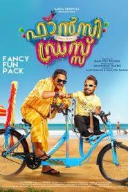 Fancy dress (2019) Malayalam WEB-DL HEVC 480p & 720p | GDrive