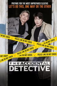 The Accidental Detective (2015) HDRip 480P 720P x264