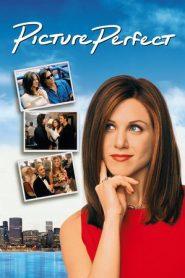 Picture Perfect (1997) Blu-Ray 480P 720P x264