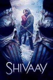 Shivaay (2016) Hindi WEB-DL 480P 720P Gdrive