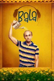 Bala (2019) Hindi WEB-DL HEVC 200MB 480p 400MB 720p 700MB GDrive