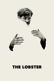 The Lobster (2015) LIMITED BluRay 480p & 720p GDRive | 1Drive