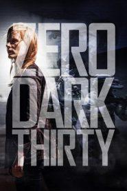 Zero Dark Thirty (2012) Dual Audio [Hindi – English] BluRay 480p & 720p GDrive