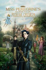 Miss Peregrine's Home for Peculiar Children (2016) Dual Audio [Hindi – English] BluRay 480P 720P GDrive